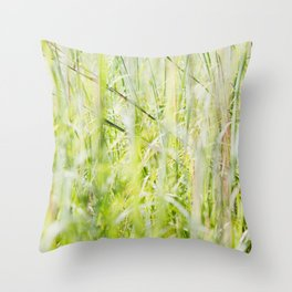 Under Our Feet Throw Pillow