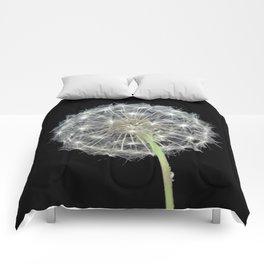 Dandelion flower Comforters