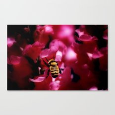 Busy Bumblebee Canvas Print