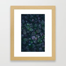 Purple and Green Plants (Color) Framed Art Print