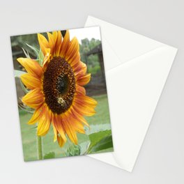 Sunflower & Bumble Bee Stationery Cards