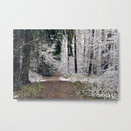 First Snow Metal Print