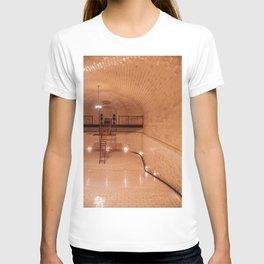 1895 Pool at the Biltmore Estate T-shirt