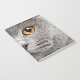 Cat in Grey Notebook