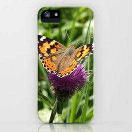 PAINTED LADY BUTTERFLY Vanessa Cardui iPhone Case