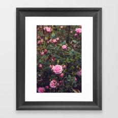 Sweet Summertime II Framed Art Print