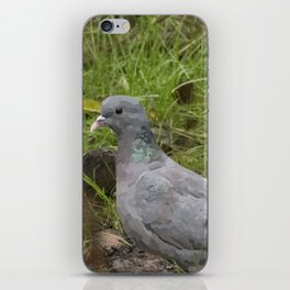 Wood Pigeon iPhone Skin