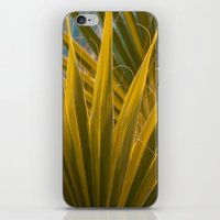 palm iPhone & iPod Skins featuring Palm by Moonworkshop