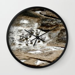 Sandpipers feeding in a tide pool Wall Clock