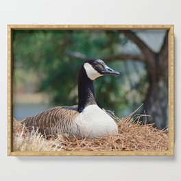 Nesting Canadian Goose Serving Tray