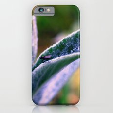 fly on Stachys leaf Photography - Nature - Garden - Plant  Slim Case iPhone 6s