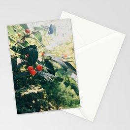 Summer shine Stationery Cards