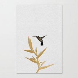 Hummingbird & Flower II Canvas Print