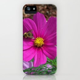 Coreopsis Flower with Bee iPhone Case