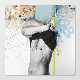 Geometry13 Canvas Print