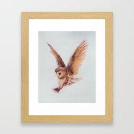 Coruja the Owl by Machale O'Neill Framed Art Print