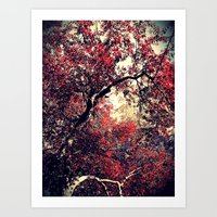Red is the Tree that Grows Art Print
