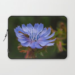 Chicory Flower with a Hoverfly Laptop Sleeve