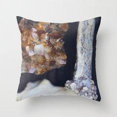 Citrine and Bone Throw Pillow
