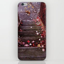 Autumn Stairs iPhone Skin