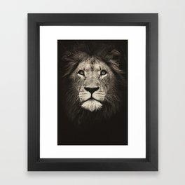 Portrait of a lion king - monochrome photography illustration Framed Art Print