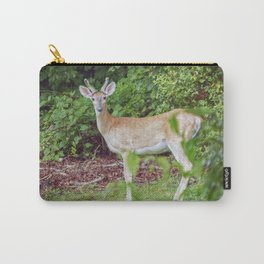 Young Buck in Velvet Carry-All Pouch