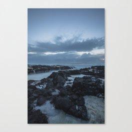 Cape Perpetua  Canvas Print