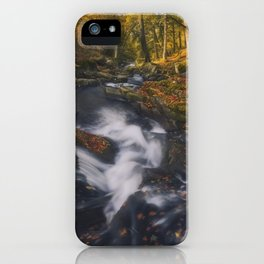 The Golden Carpets iPhone Case