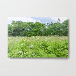 Wild nature parks V - Nature Fine Art photography Metal Print