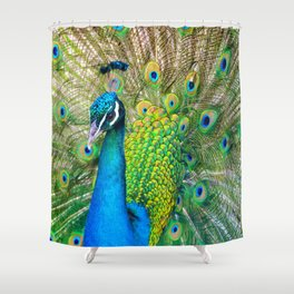 Beautiful Peacock (Color) Shower Curtain