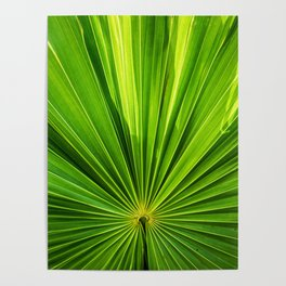 green pattern Poster