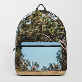 She daydreamed of surreal worlds and they vanished into matter. Backpack