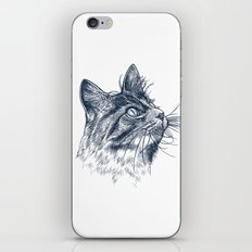 Cat Portrait iPhone & iPod Skin
