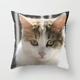 Molly, Portrait n. 4 Throw Pillow