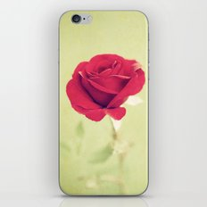 Perfect Rose iPhone & iPod Skin