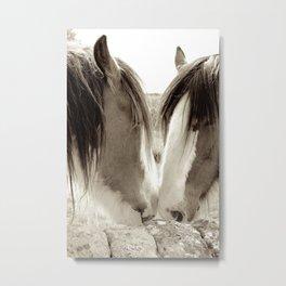 Horse Romance Metal Print