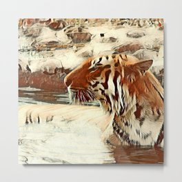 Warm colored Animal swimming tiger Metal Print