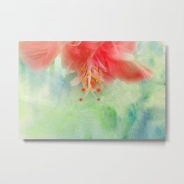 Softly Colored Metal Print