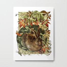 The Old Hare Metal Print
