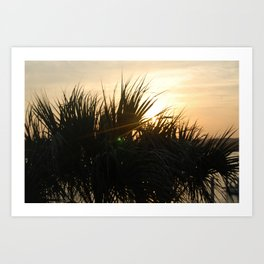 Low Country Sunset Art Print