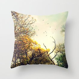 Beautiful morning Throw Pillow