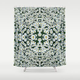 Daisy Daze Shower Curtain