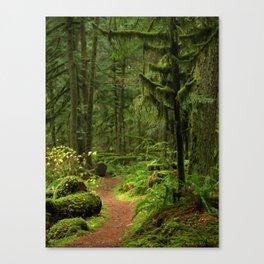 The Deep Woodland  Path... Canvas Print