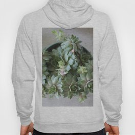 Enduring Succulent Hoody