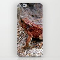frog iPhone & iPod Skins featuring frog. by zenitt