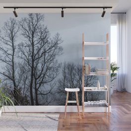 Naked tree in a foggy day Wall Mural