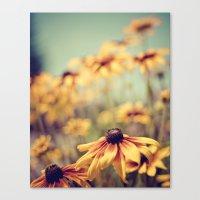 sunshine Canvas Prints featuring sunshine by shannonblue