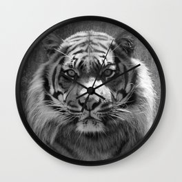 The eye of the tiger II (vintage) Wall Clock