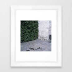 Do I have to keep up the space to keep you satisfied? Framed Art Print
