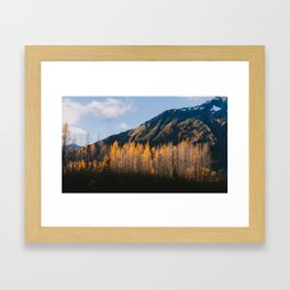 Autumn in Kenai Fjords National Park III Framed Art Print